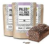 Organic Workout PALEO-BACKMISCHUNG 3er Pack   Bio   Brot-Alternative-gluten-frei   lower-carb  ...