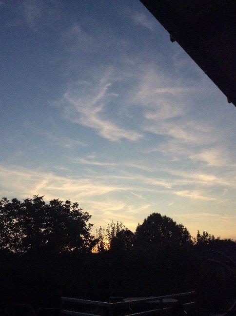 2. sept 1916 - 19h abends. der ganze Himmel ist voller Linien - wieso jetzt wo die Sonne doch untergeht?