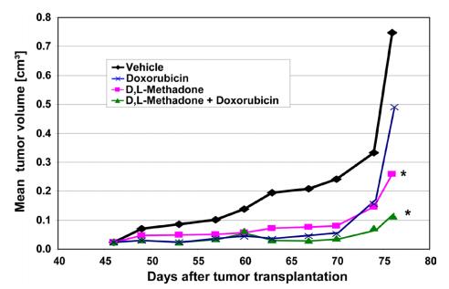 Methadon und Doxorubizin Fresern (1)