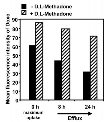 Methadon und Doxorubizin Fresern (4)