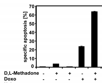 Methadon und Doxorubizin Fresern (5)