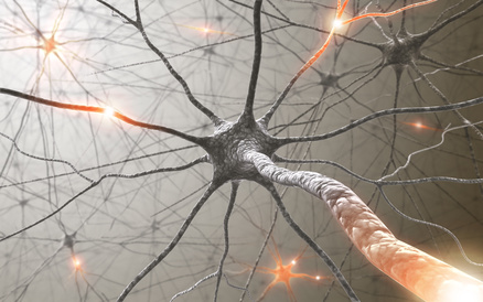 Inside the brain. Concept of neurons and nervous system.