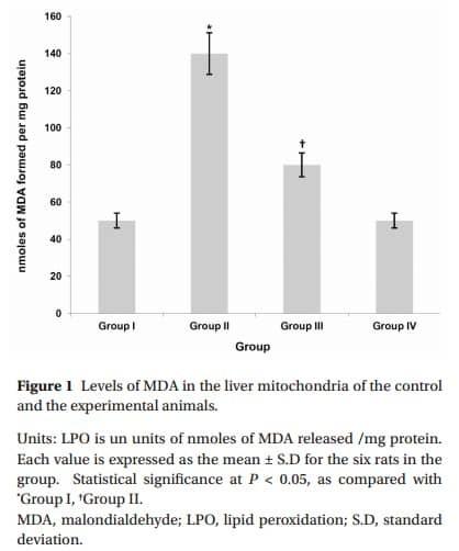 Malondialdehyd (Marker für Nitrostess der Mitochondrien) in den Lebermitochondrien behandelter Mäuse: Gruppe1 = Kontrollmaus Gruppe2 = Krebsmaus (DMBA) Gruppe 3 = DMBA-Maus + Taurin Gruppe 4 = Kontrollmaus + Taurin