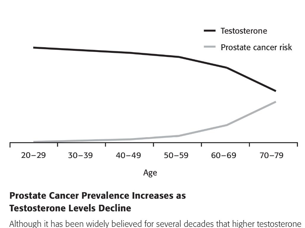 testosteron Prostatakrebs